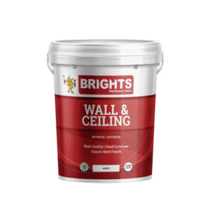 Prominent Wall And Ceiling White 20l